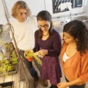 Biology Professor Wins National Contest for Fascination of Plants