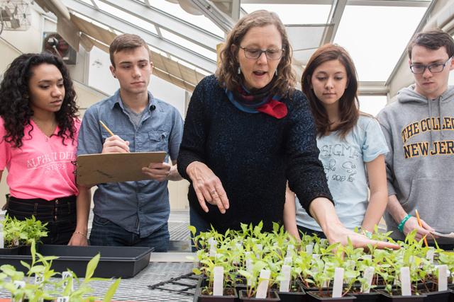 science-homepage-highlights-slider-undergradresearch-FINAL