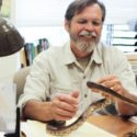 Poachers and habitat loss are endangering these N.J. snakes. This professor works to keep the reptiles safe