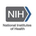 Two School of Science Professors Receive NIH Grants for Research on Developmental Biology